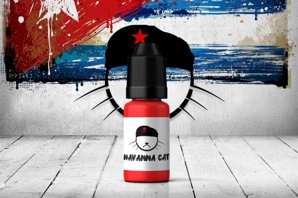 Copy Cat - Havanna Cat